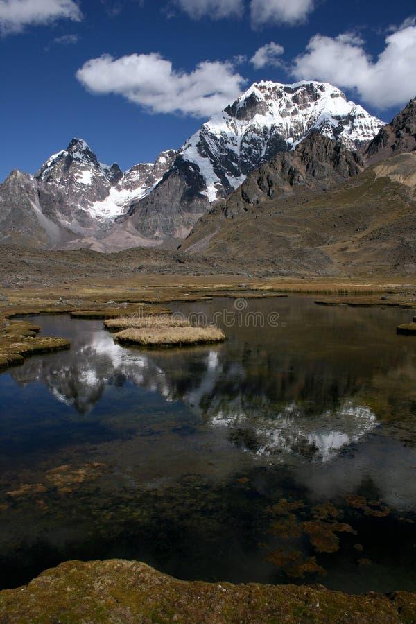 山秘鲁 库存照片