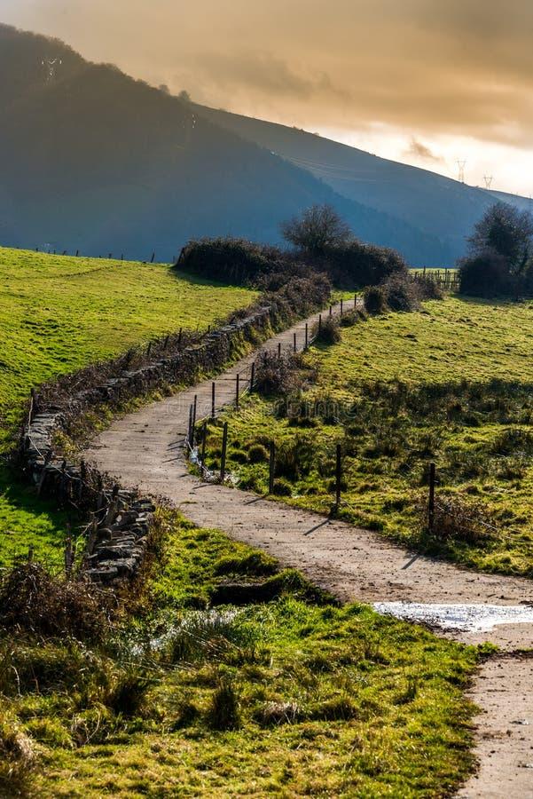 山绿色风景  库存照片