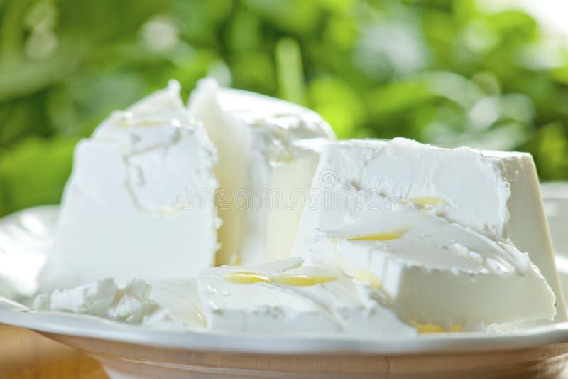 山羊乳干酪沙拉 免版税库存照片