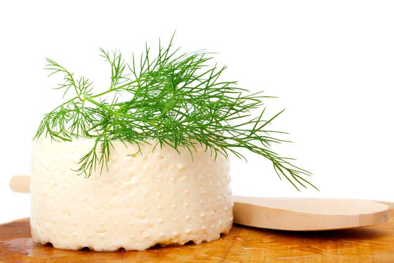 山羊乳干酪 免版税库存照片