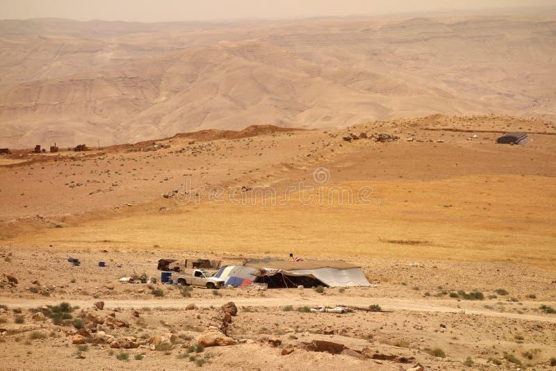 山羊在约旦看管阵营 免版税图库摄影