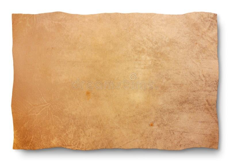 山羊皮肤 库存图片