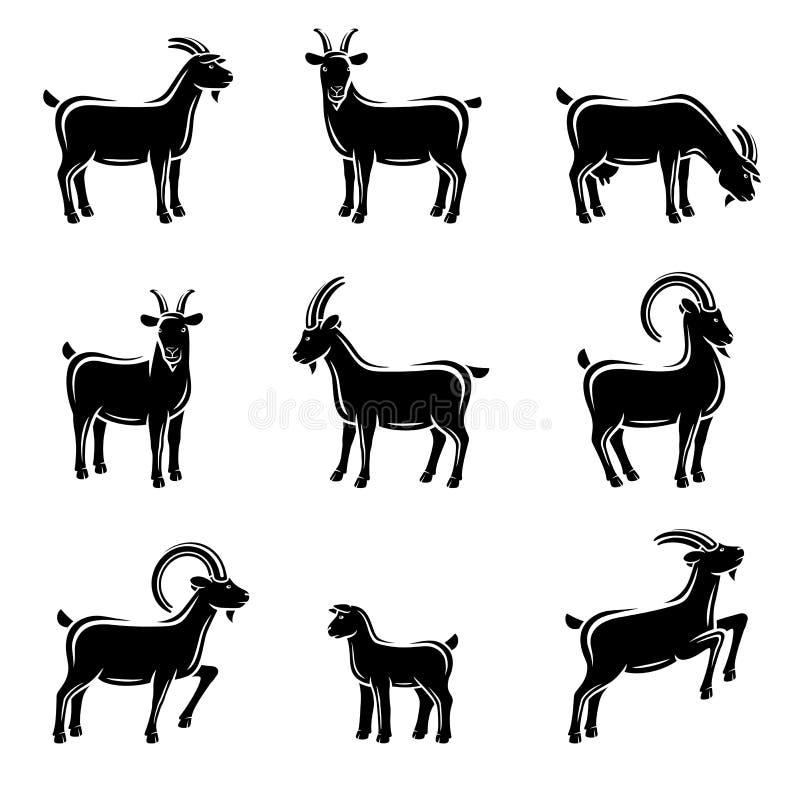 山羊集合 向量 向量例证
