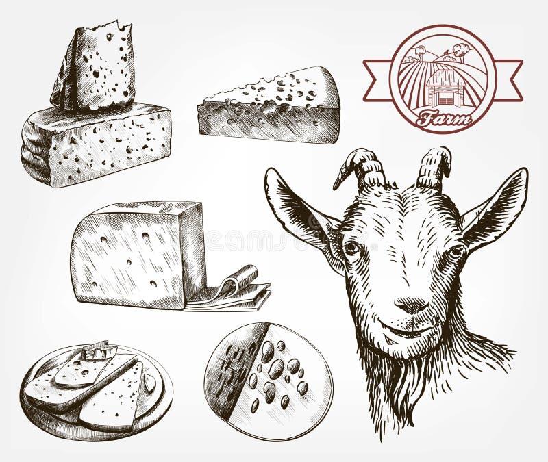 山羊顶头侧视图 山羊乳干酪 套在灰色的剪影 向量例证