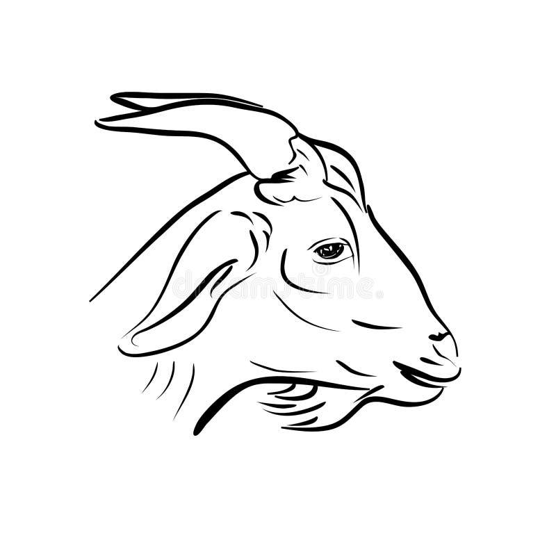 山羊头线艺术在白色的 皇族释放例证