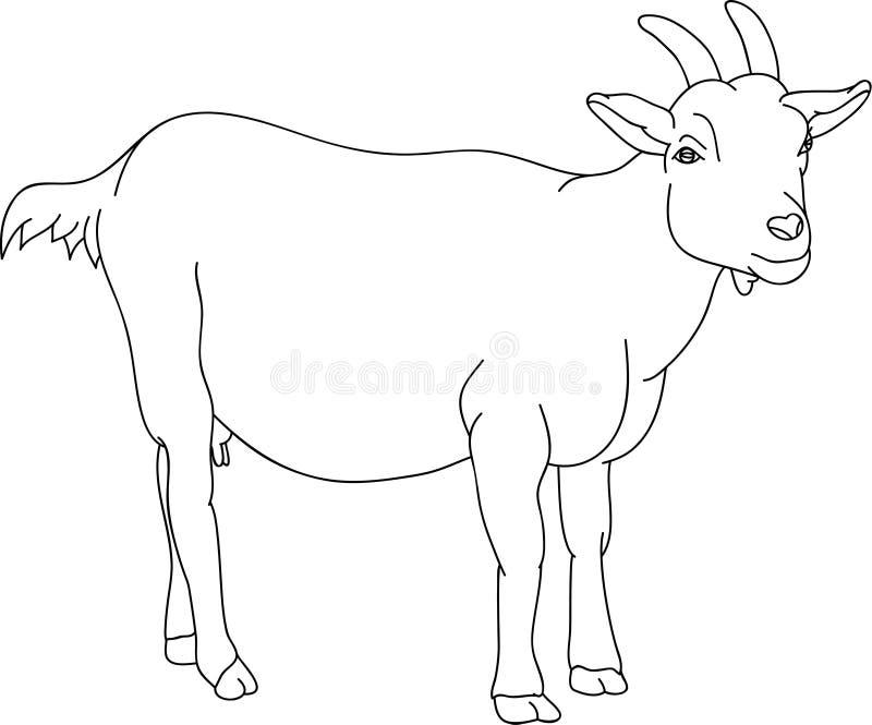 山羊 库存例证