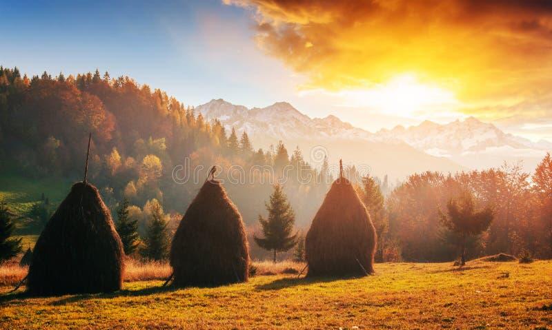 山脉在秋天季节的喀尔巴阡山脉 免版税库存照片