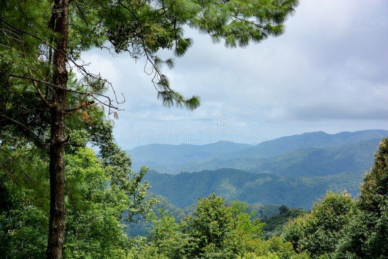 山脉风景在春天 免版税库存图片