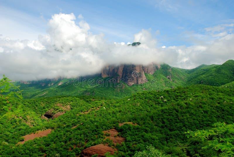 山脉马德雷多山风景在锡那罗亚州墨西哥 免版税库存照片