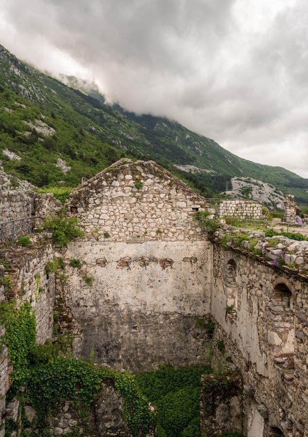 山腰的科托尔堡垒在老镇上在黑山 免版税图库摄影
