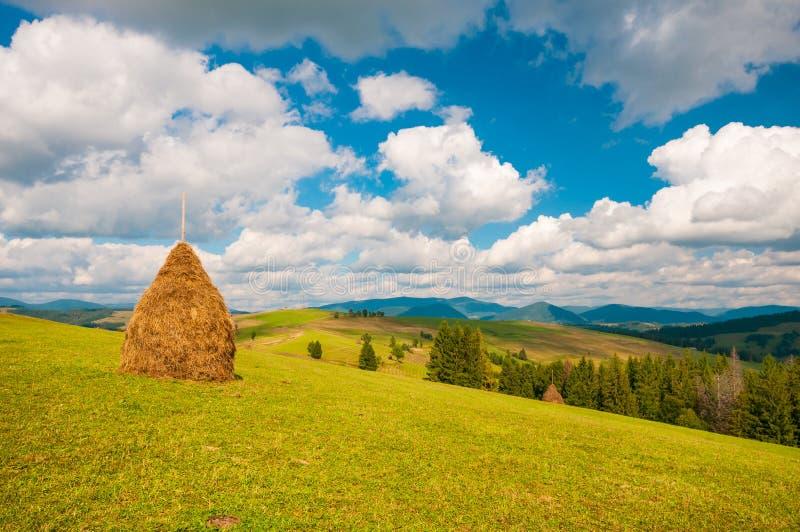 山草甸的干草堆有蓝色多云天空的 乌克兰,欧洲 免版税库存照片