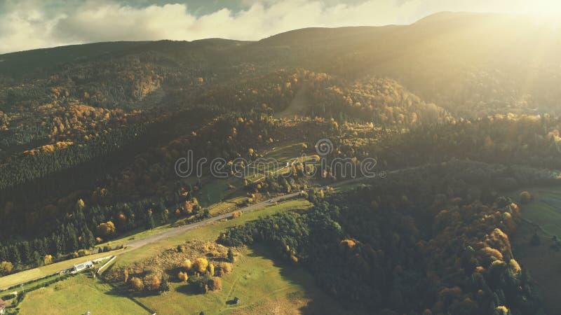 山谷风景森林倾斜鸟瞰图 免版税库存照片
