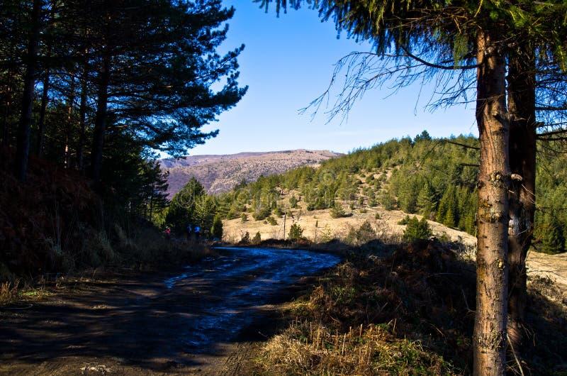 山路在早期的春天,登上Stolovi 库存照片