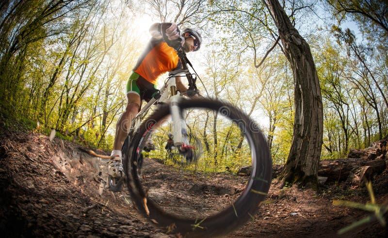 登山车骑自行车者 免版税库存图片