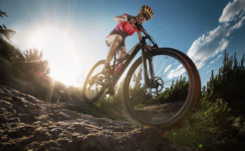 登山车骑自行车者 免版税库存照片