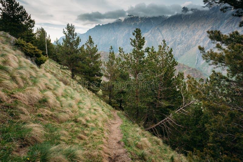 山道路在一个山坡的方式车道在V附近的一个夏天 免版税库存照片