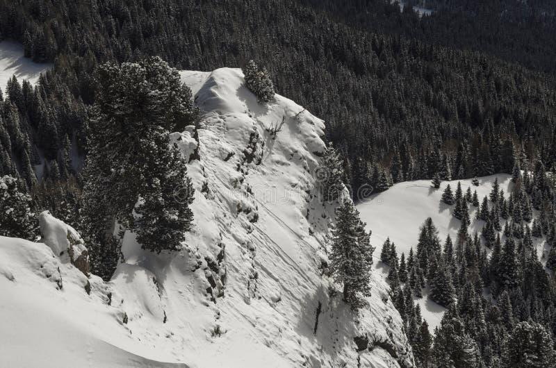 山阿尔卑斯在意大利 库存图片