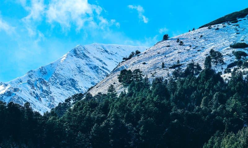 山雪峰顶,美好的自然冬天森林背景 集成电路 图库摄影