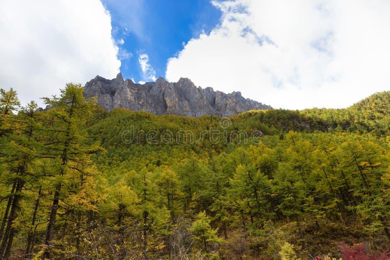 山风景在亚丁 库存照片