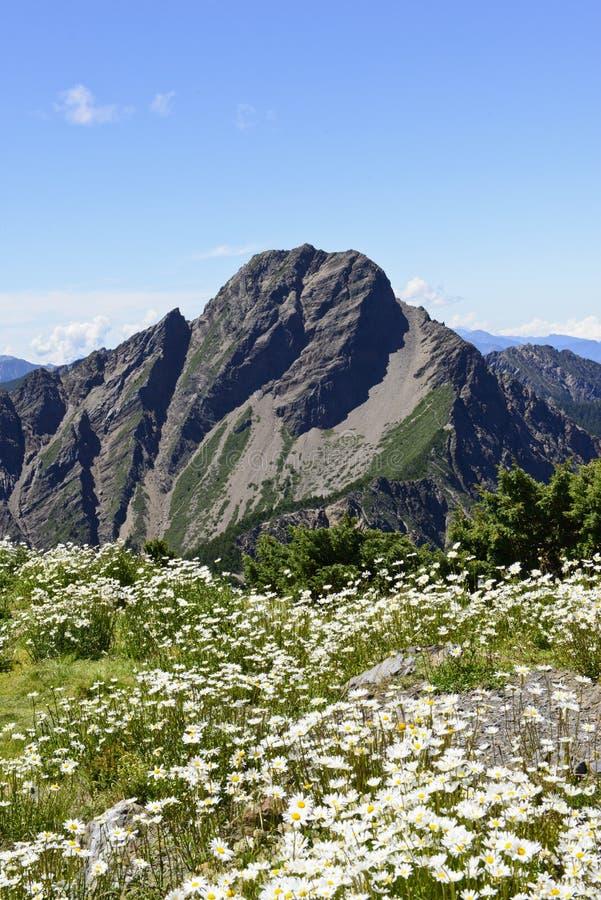 山风景在台湾 库存照片