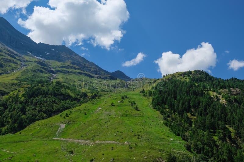 山风景在瑞士阿尔卑斯山脉在夏天 库存图片