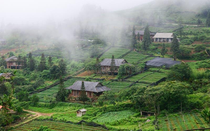 山风景在越南北部 免版税库存照片