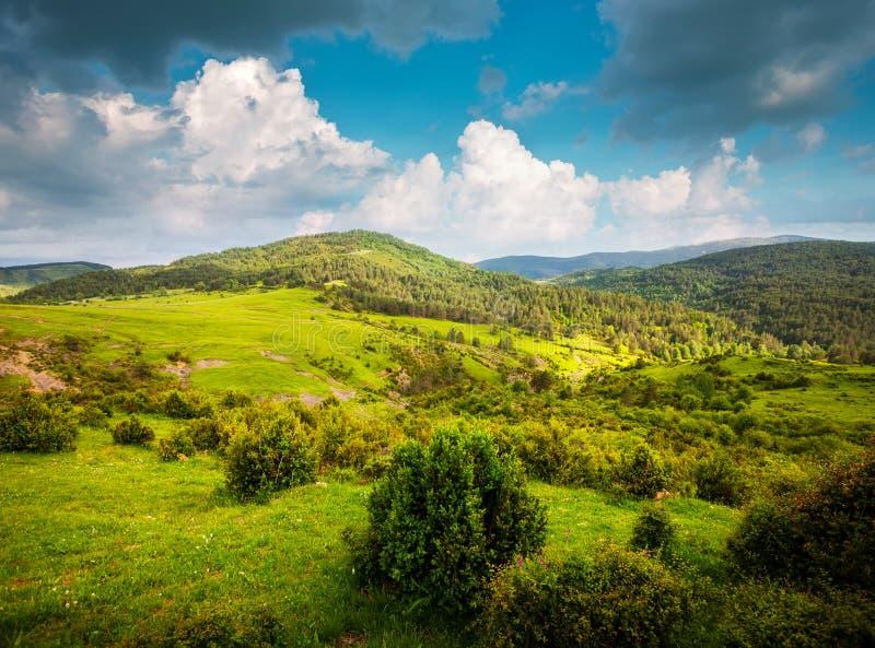 山风景看法  库存图片
