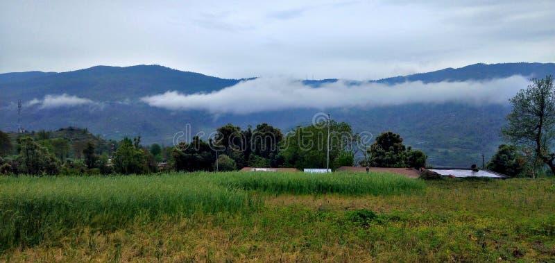 山风景视图与雾绿色领域的 库存照片