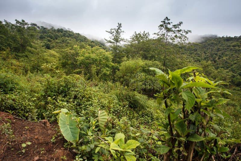 山风景,缅甸 库存图片
