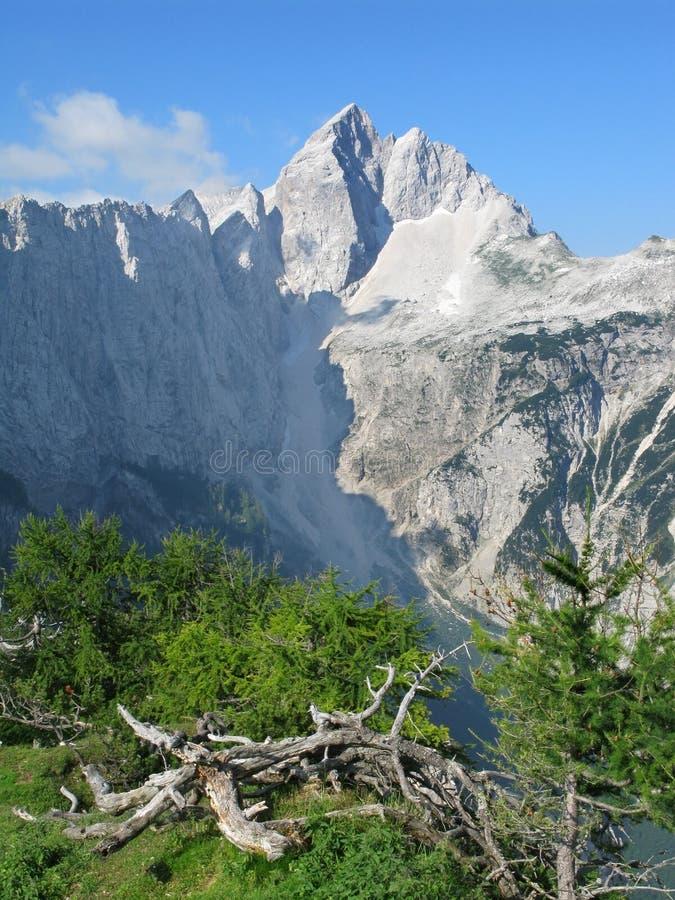山麓小丘jalovec峰顶 库存照片