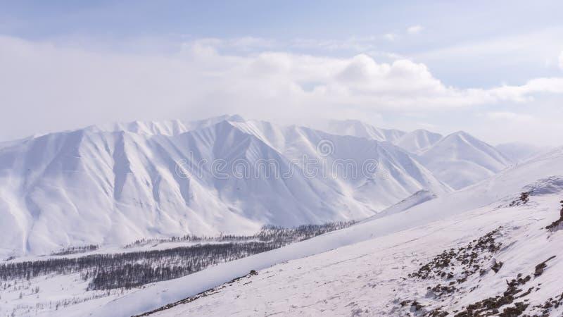 山,早晨,冬天,雪风景 图库摄影