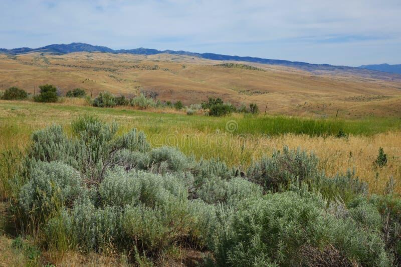 山临近Mesa,爱达荷 免版税库存照片