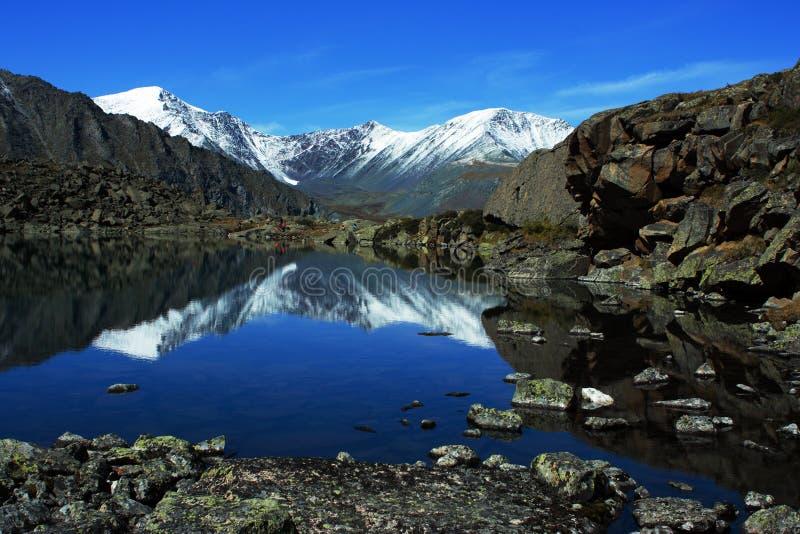 山Altai 免版税库存图片