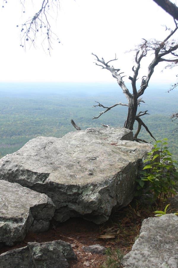 岩层俯视的谷 免版税库存照片