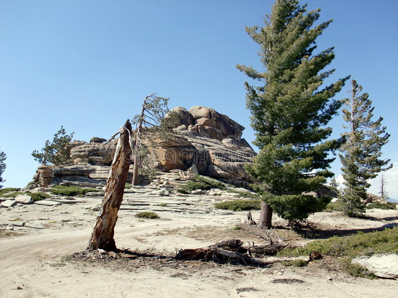 岩层和树在足迹对Shuteye监视 免版税库存照片