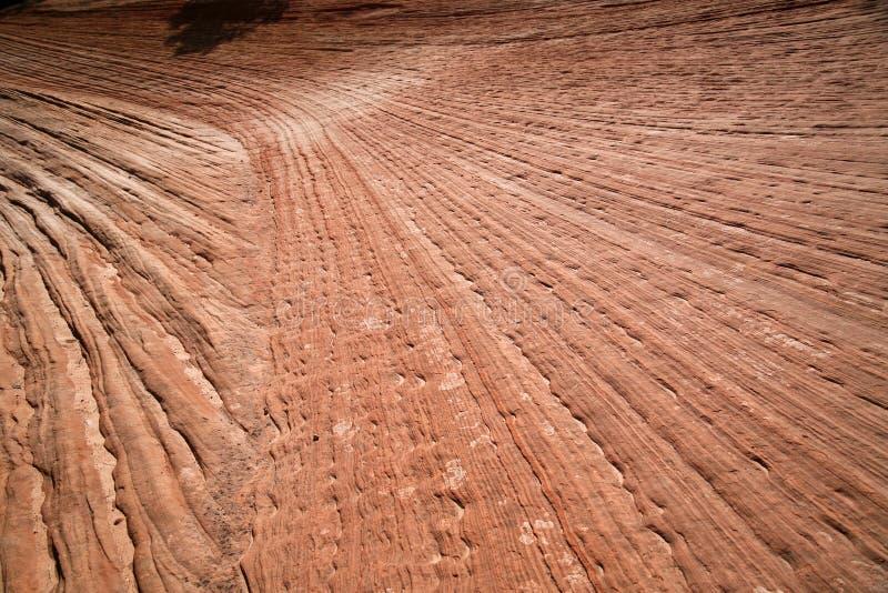 岩层在锡安国家公园,犹他,美国 图库摄影