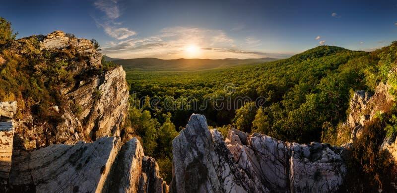 岩林景观全景 库存图片