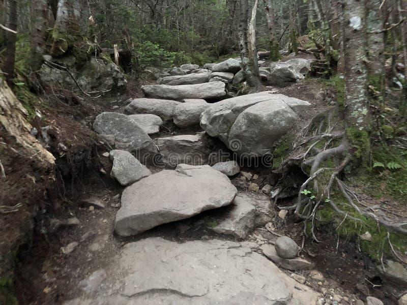 岩石台阶 库存图片