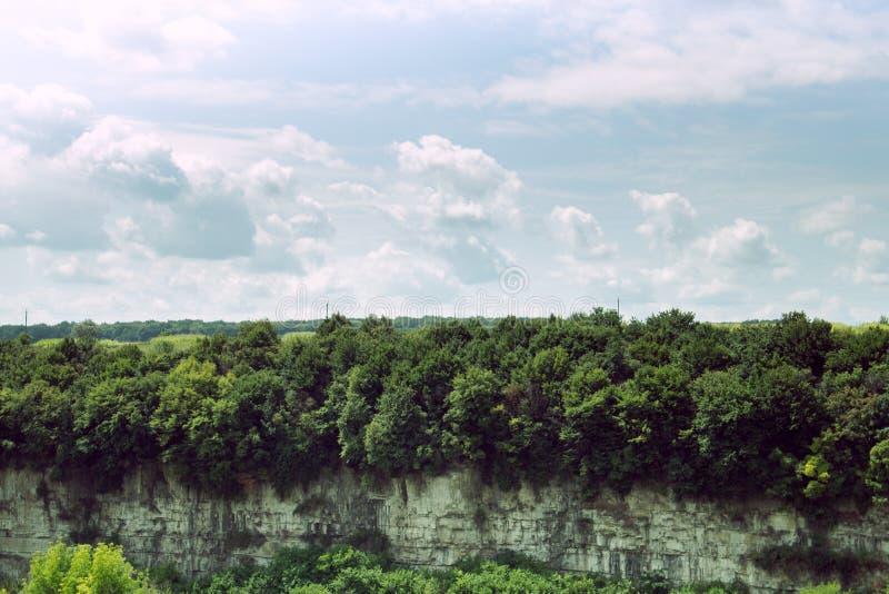 岩石和好的剧烈的天空的森林 免版税图库摄影