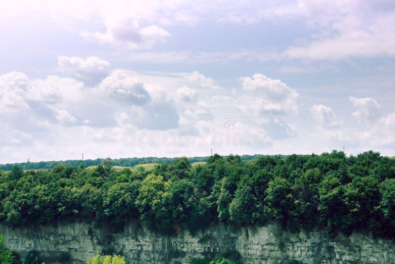 岩石和好的剧烈的天空的森林 库存照片