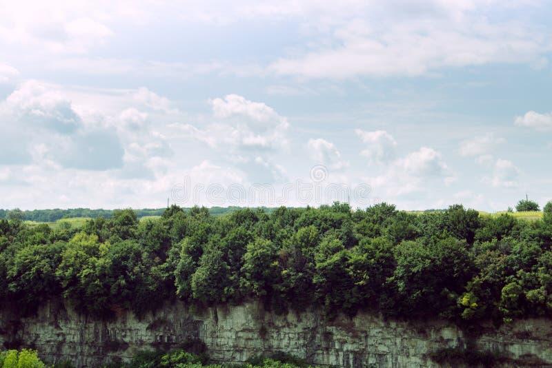 岩石和好的剧烈的天空的森林 免版税库存照片