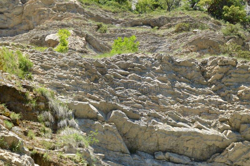 岩石和山底视图,生态系保护的概念和未触动过的自然 免版税图库摄影