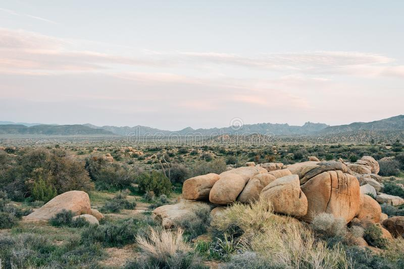 岩石和沙漠风景沿一条土路在Pioneertown山蜜饯在Rimrock,加利福尼亚 免版税库存照片