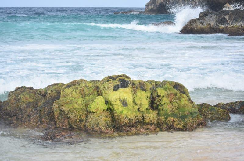 岩石和波浪在阿鲁巴的东边 免版税库存照片