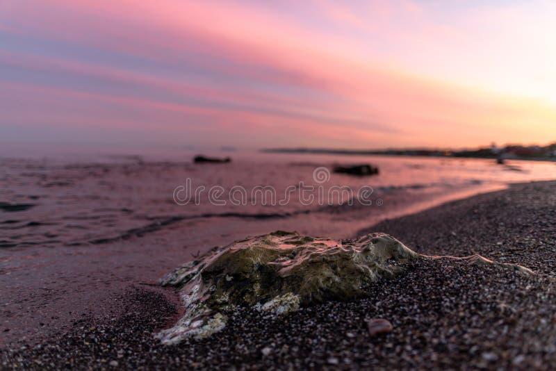 岩石在有桃红色日落的海 库存照片