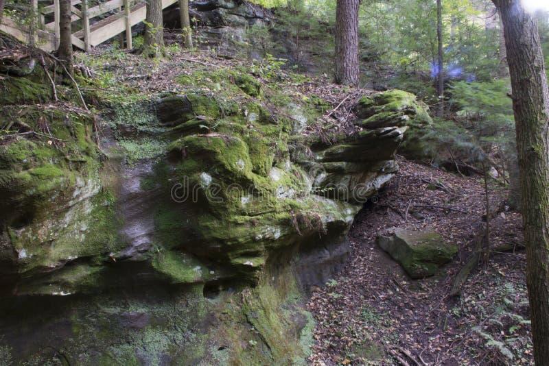 岩石墙壁,灰洞,俄亥俄 库存照片