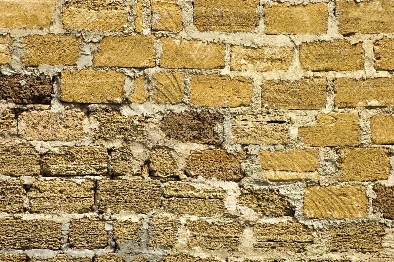 岩石壳 库存图片