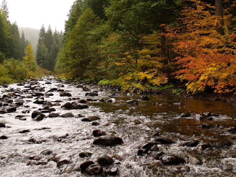 岩石大的河 免版税库存照片