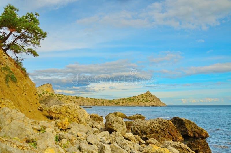岩石岸,两棵杉木,美丽的多云天空,在黑海海岸,克里米亚,诺维Svet的海湾 免版税库存照片