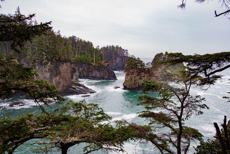 岩石峭壁veiw通过树 免版税库存图片